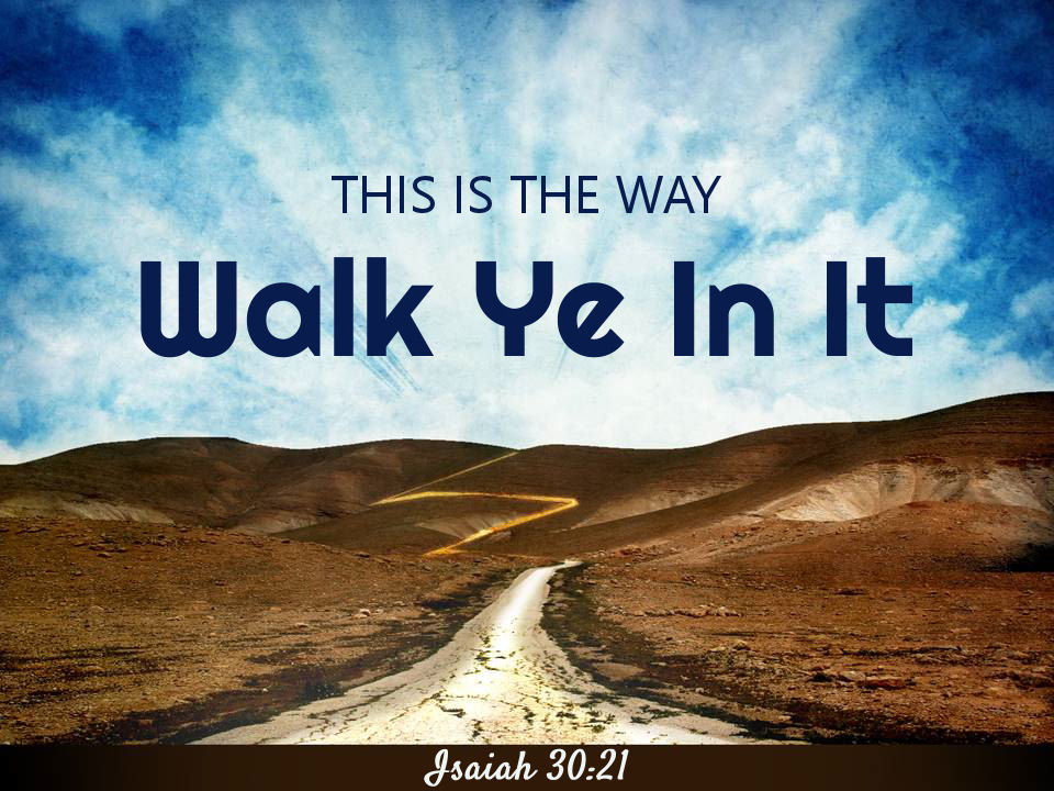 Image result for this is the way walk in it